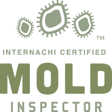 The Best Mold Inspection In Lorain Ohio