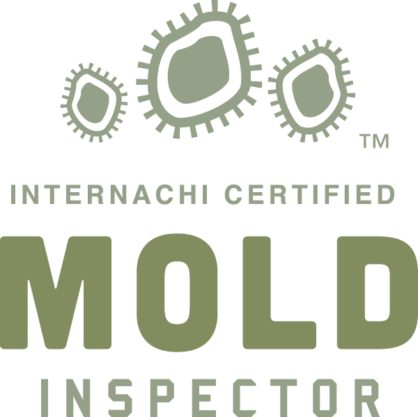 Mold Inspection Northern Ohio