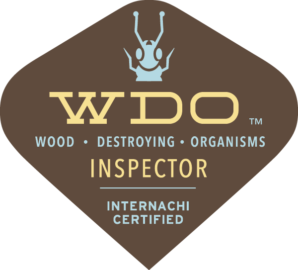 WDI wood destroying insect inspection - termite inspection Northern Ohio
